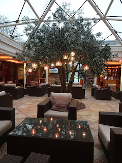 seating area in spa with inside large tree