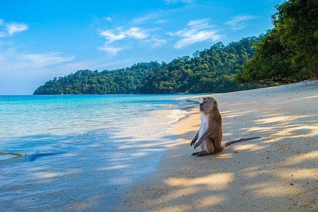 Monkey Island, Monkey Island Halong bay, Monkey Island Halong Bay Vietnam,