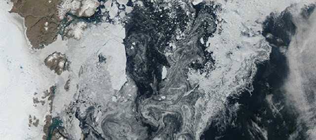 Sea ice strongly linked to climate change in past 90,000 years
