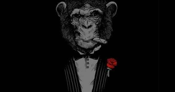 Godfather Hd Wallpaper The Secret Garden Monkey Business Design By Alex Solis
