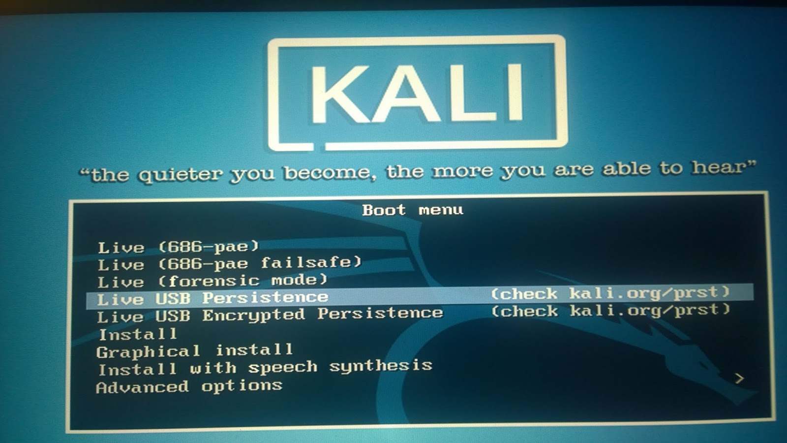 how to make kali usb