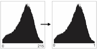 Resample dan Rescale data Raster pada ArcGIS