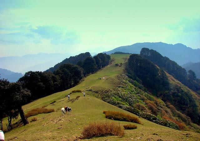 Shoja, Best Places to visit in Himachal Pradesh