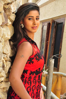 Actress Pavani Pictures in Red Dress at Yeluka Majaka Movie Press Meet 0014