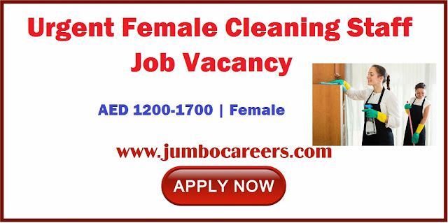 Cleaning Staff Job