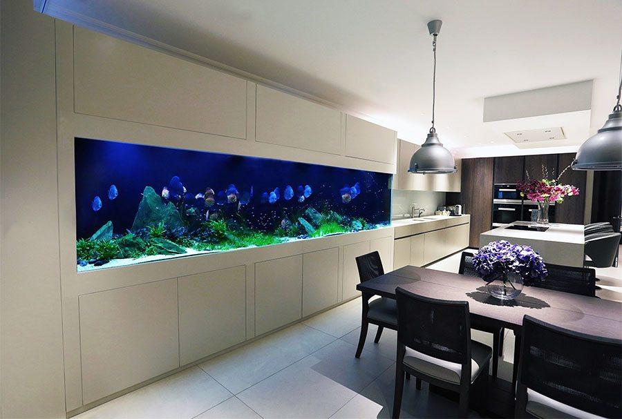 Marzua los mejores consejos para decorar con acuarios - Acuario en casa ...