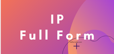 IP full meaning