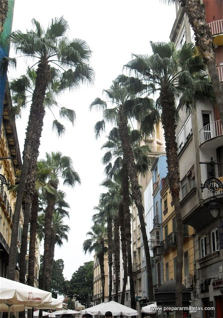 visitar Málaga en verano