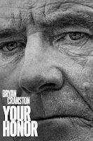 Your Honor Season 1 English 720p HDRip
