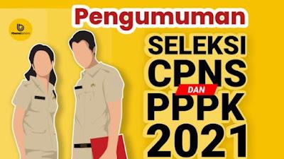 Cek di Sini Pengumuman Hasil Seleksi Administrasi Berkas CPNS dan PPPK 2021 Kabupaten Bone