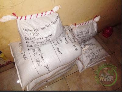 Packing benih padi pesanan NANDAR SUKANDAR Subang, Jabar