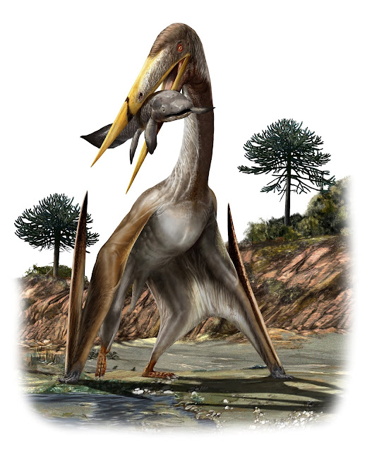 Gigantic flying pterosaurs had spoked vertebrae to support their 'ridiculously long' necks