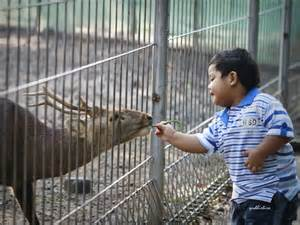 Berbuat baik walaupun kepada binatang