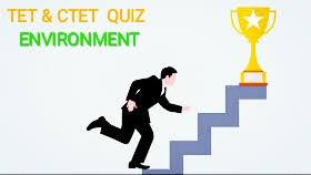 Quiz teachers Adda