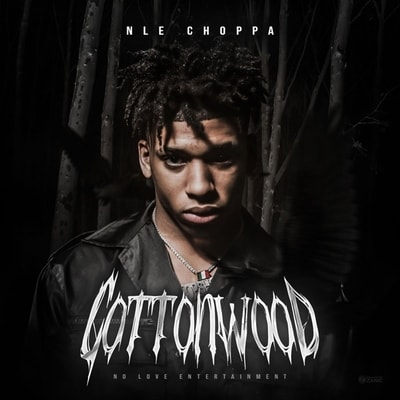 NLE Choppa - Cottonwood (2019) - Album Download, Itunes Cover, Official Cover, Album CD Cover Art, Tracklist, 320KBPS, Zip album