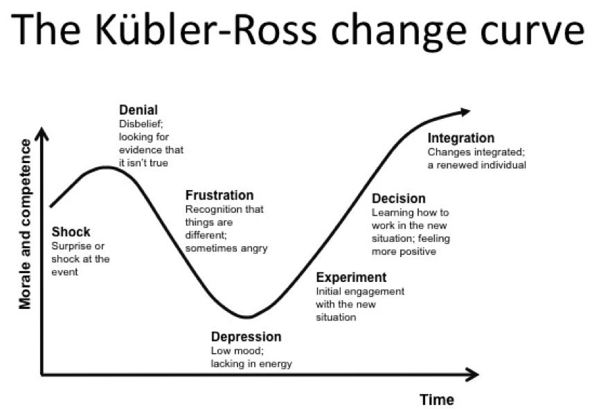 Pragmatist: The Change Curve