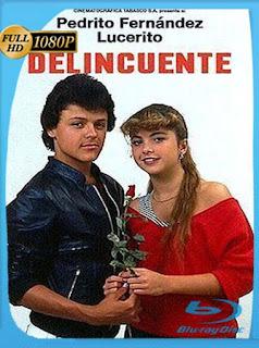 Pedro Fernández Delincuente (1984) HD [1080p] Latino [GoogleDrive] SilvestreHD