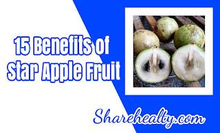 15 Benefits of Star Apple
