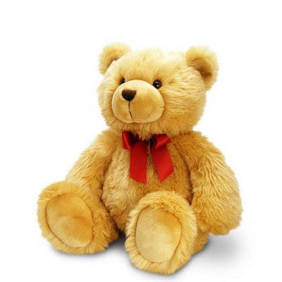 قصة الدب المغامر للاطفال الصغار
