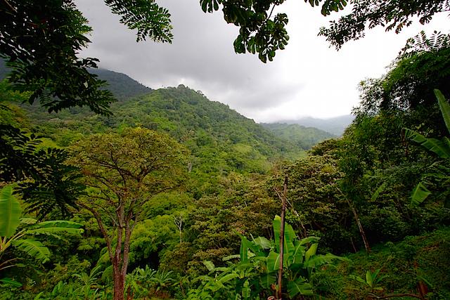 Minca Sierra Nevada de Santa Marta Colombia