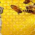 Αρισταίος ο πρώτος μελισσοκόμος