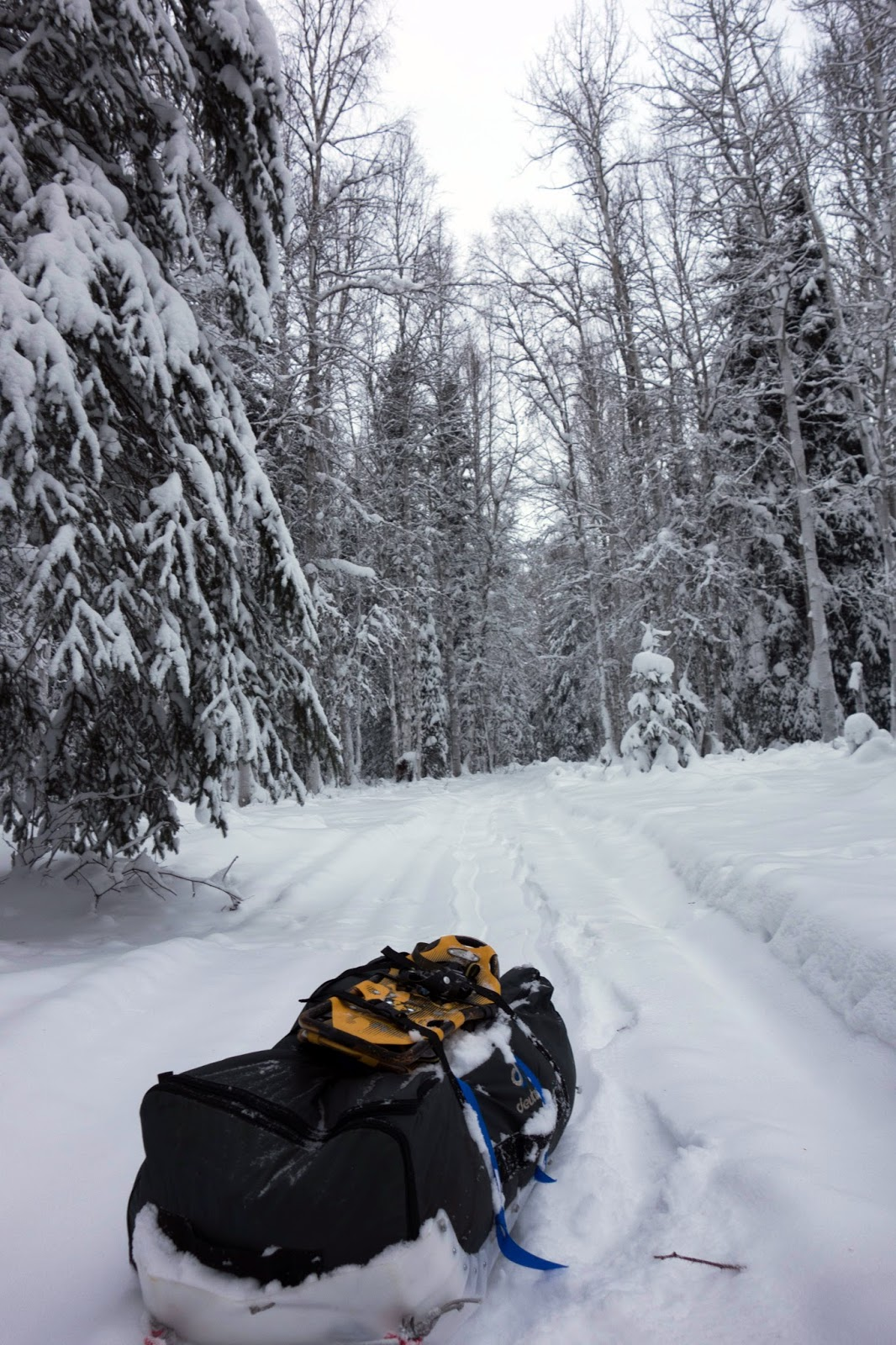 Why Was I Dragging A Sled? Because I'm Still Considering It As A Way To  Avoid That Terrifying Expedition Bymitting To A Harder €� But More  Predictable