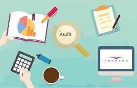 Faktor-Faktor Yang Mempengaruhi Kualitas Audit