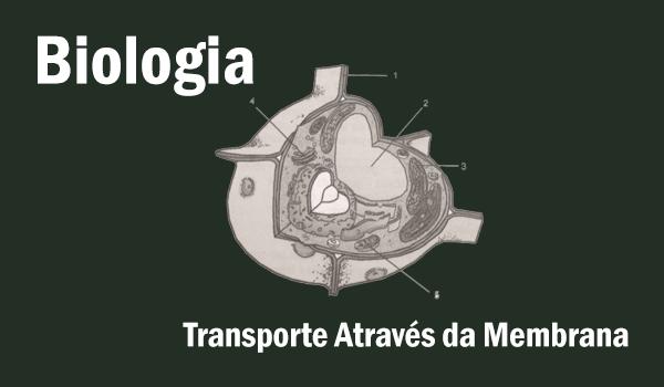 atividade-biologia-transporte-atraves-da-membrana-com-gabarito