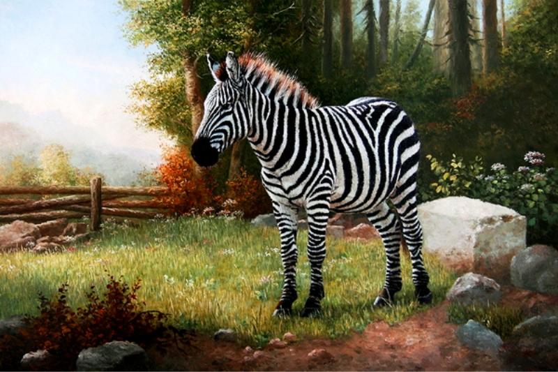 Pinturas cuadros lienzos cuadros de animales - Cuadros de cebras ...
