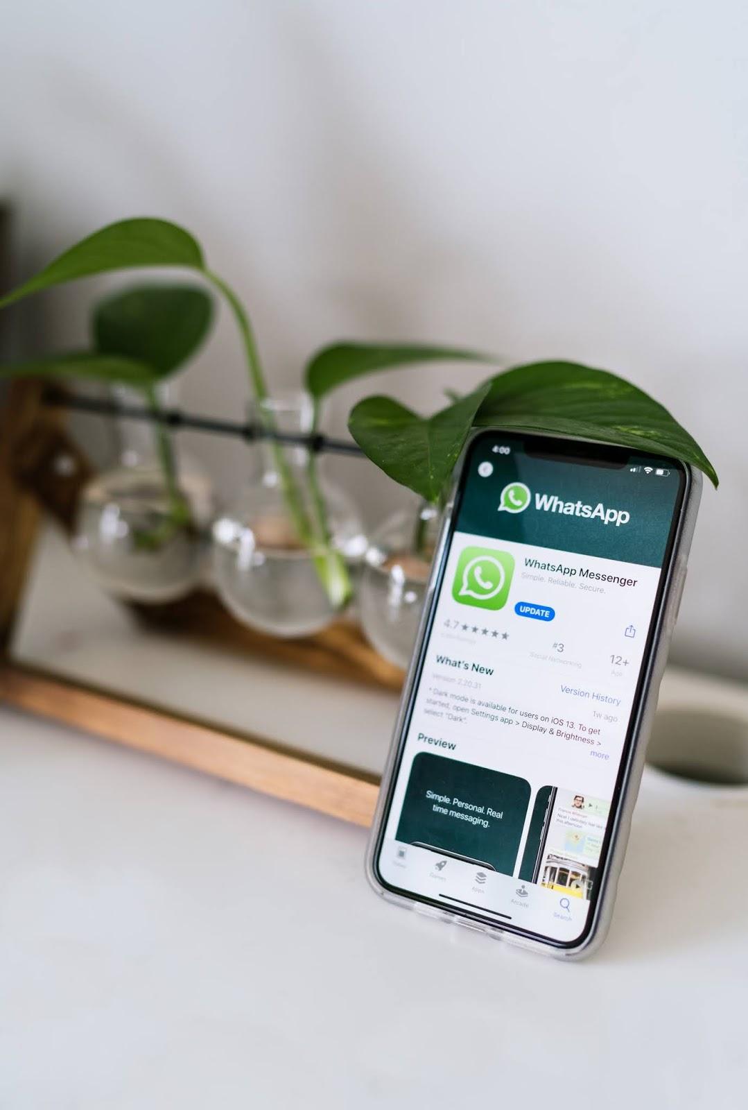 Cara Mudah Balas Pesan WhatsApp Tanpa Ketahuan Online