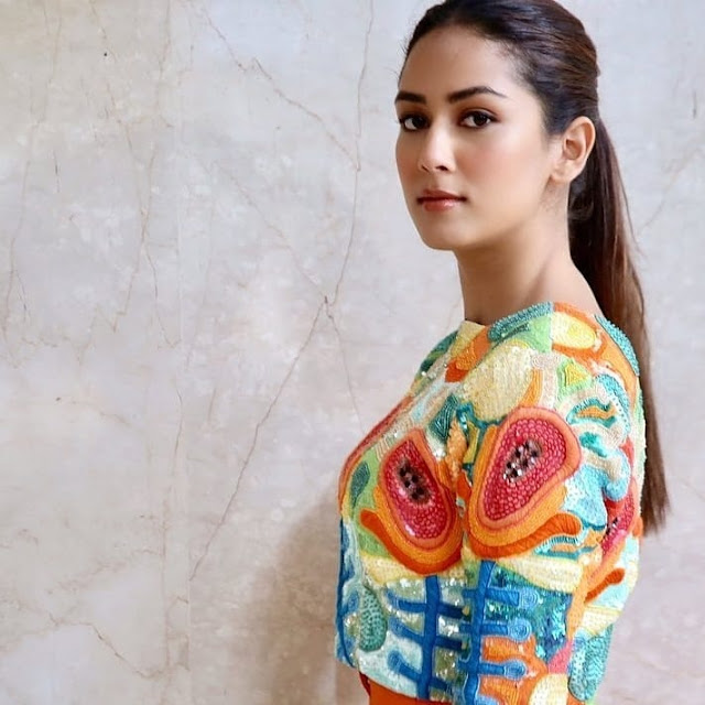 Mira Rajput  IMAGES, GIF, ANIMATED GIF, WALLPAPER, STICKER FOR WHATSAPP & FACEBOOK