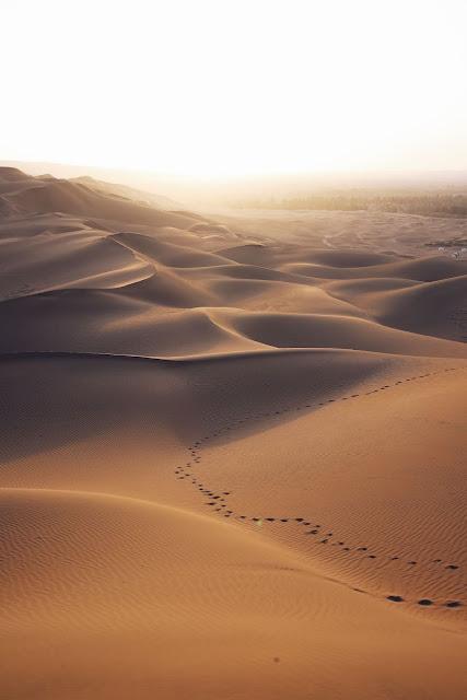 Desert natural wallpaper