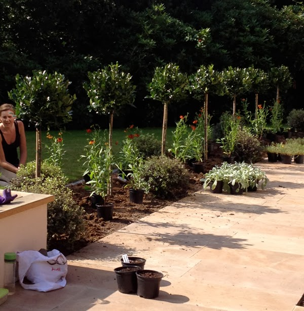 Greencube Garden And Landscape Design Uk It S The