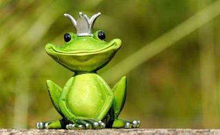 Funny Instagram Usernames for girls, frog prince, prince ffrog, frog,funny,funny frog,crazy frog,frogs,funny animals,funny frogs,funny paper frog,funny videos,origami funny frog,make paper funny frog,deadly frog,funny frog compilation,origami paper funny frog,funny compilation,how to make paper funny frog,funny animal videos,screaming frog,funny animals videos,poison dart frog,crazy frog dance,screaming frog seo,crazy screaming frog,funny cartoons,jungle frog,funny video