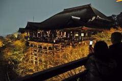 清水寺春の夜間特別拝観