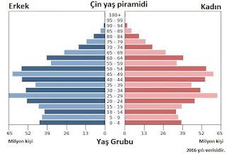 Çinin demografik yapısı