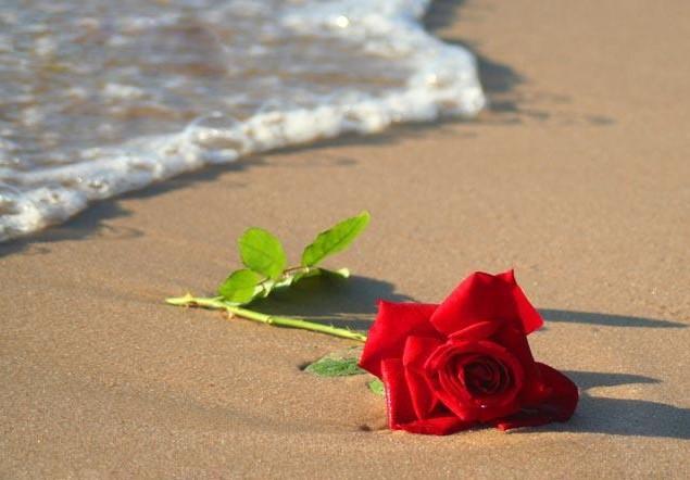 قصص و روايات رومانسية - الحب الصامت
