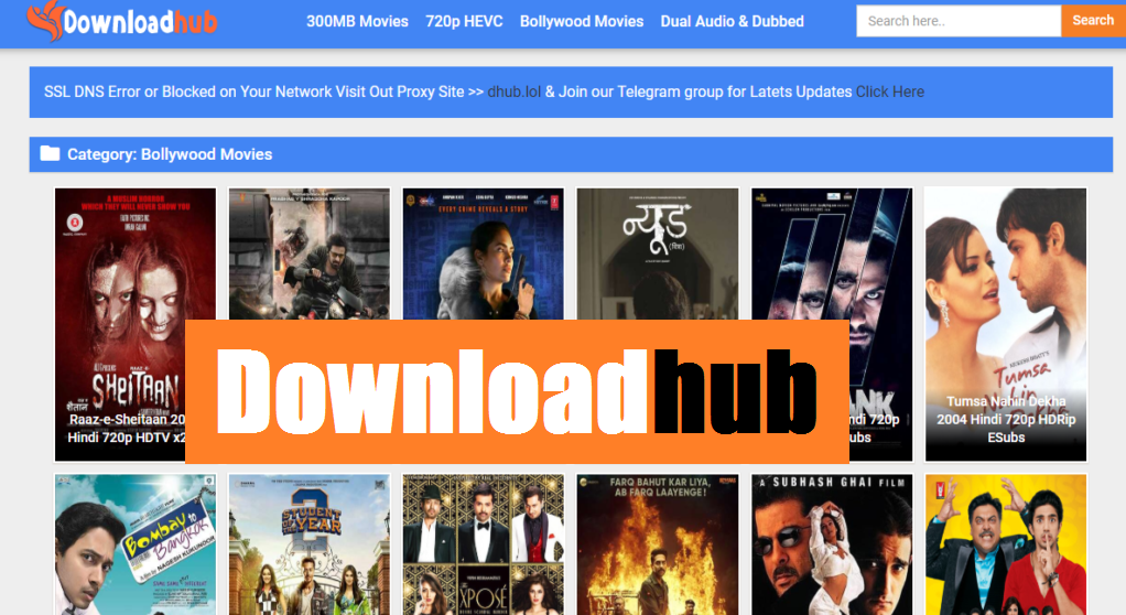 Downloadhub | Downloadhub.in 300MB Dual Audio Bollywood Movies Download
