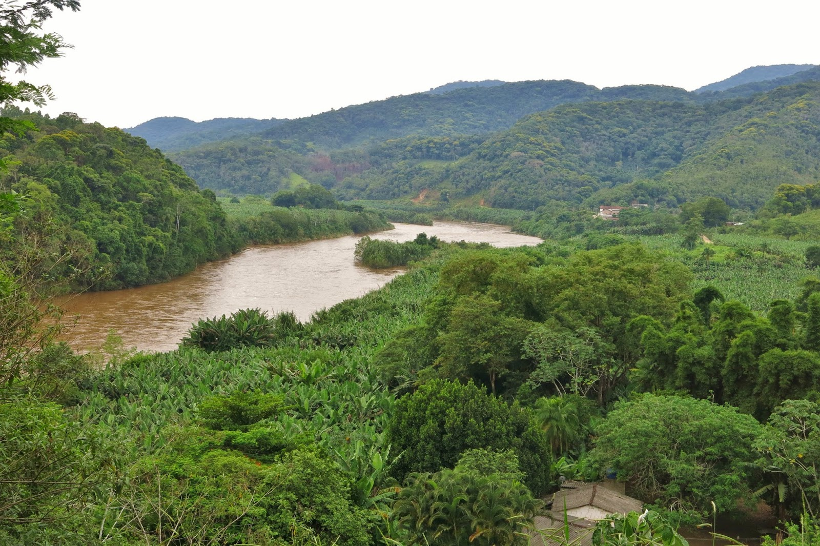 Rio Ribeira do Iguape, visto do quilombo