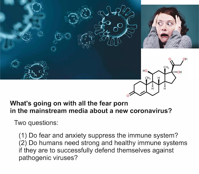 https://www.calmclinic.com/anxiety/immune-system