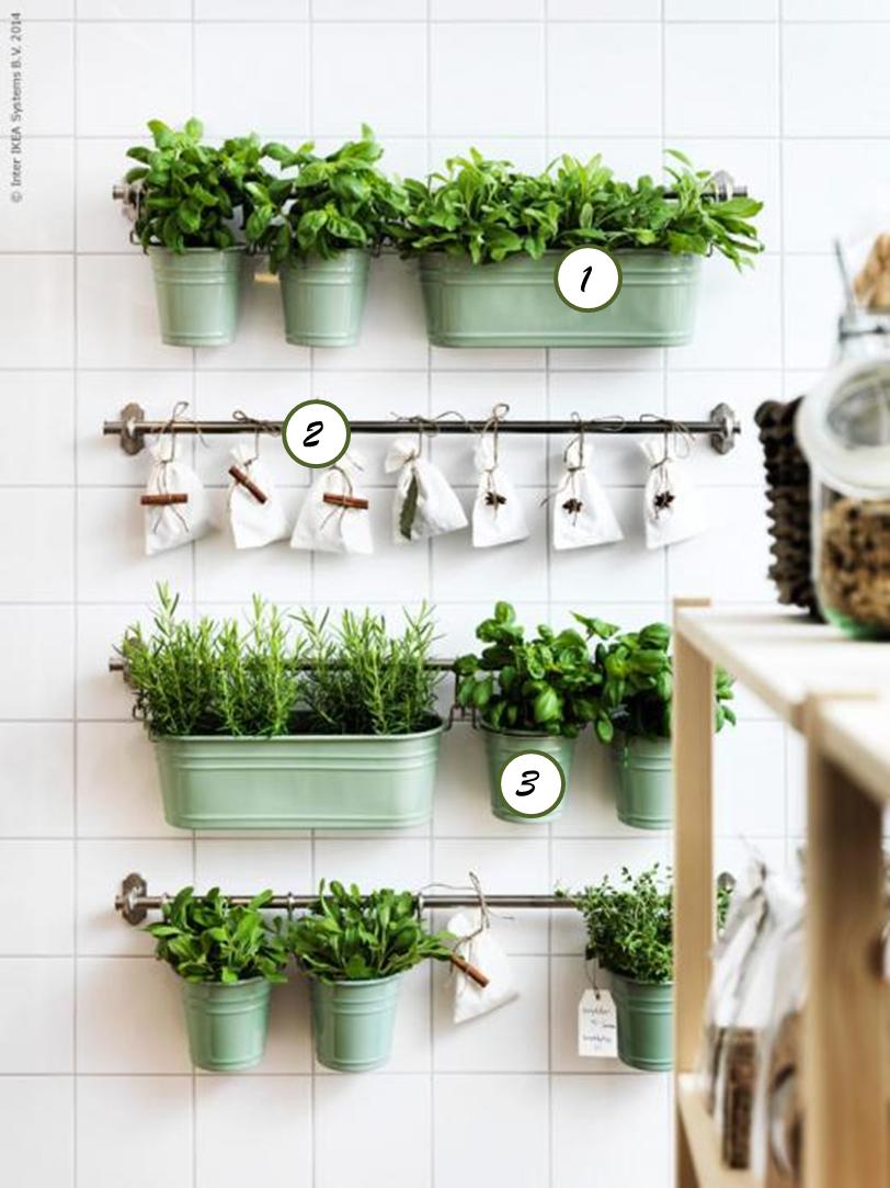 Ochprojekt 12 Pomyslów Na Rośliny W Kuchni