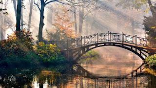 خلفيات جسور والجميلة