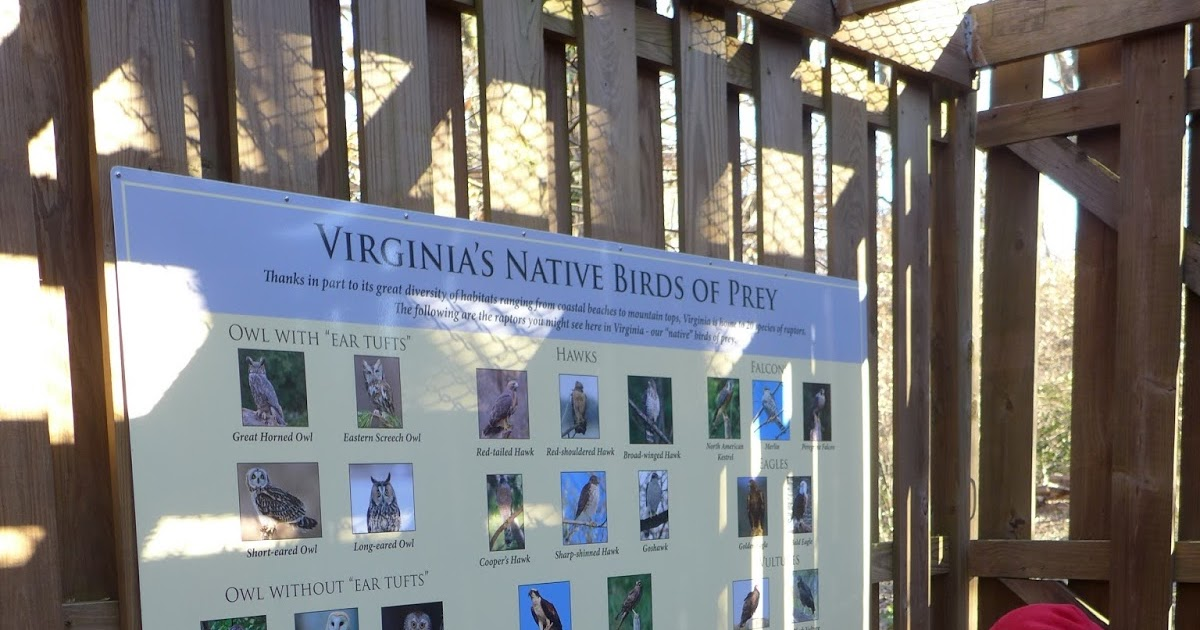 Potomac Overlook Nature Center Arlington