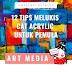 12 TIPS MELUKIS MENGGUNAKAN CAT ACRYLIC UNTUK PEMULA