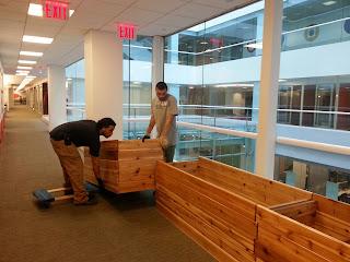 assembing custom built clear coated large rectangular cedar planters modular heavy duty fingerjoint interlocking high quality newyorkplantings hardscape carpenters NYC .jpg