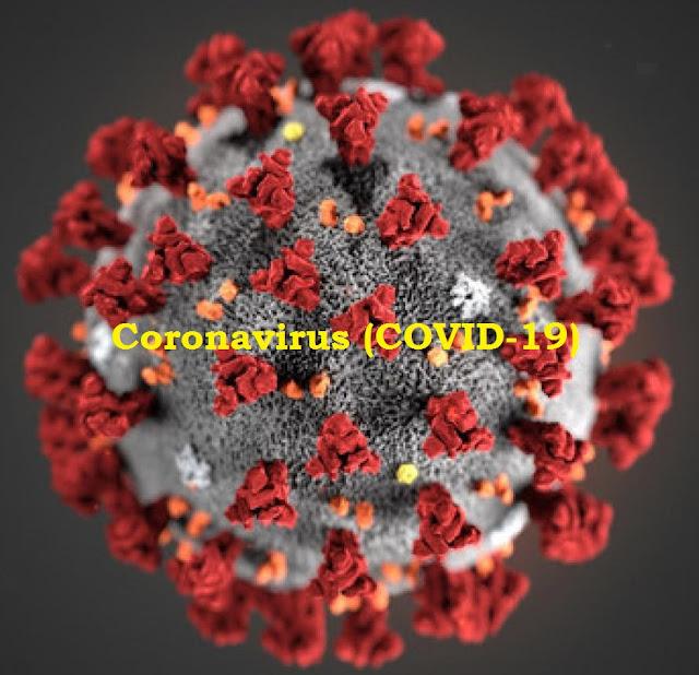 Coronavirus (COVID-19) Tips For Care - cover