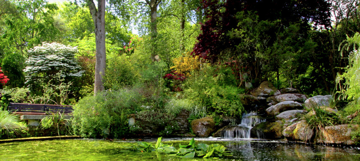The tranquil Pinetum gardens in St Austell