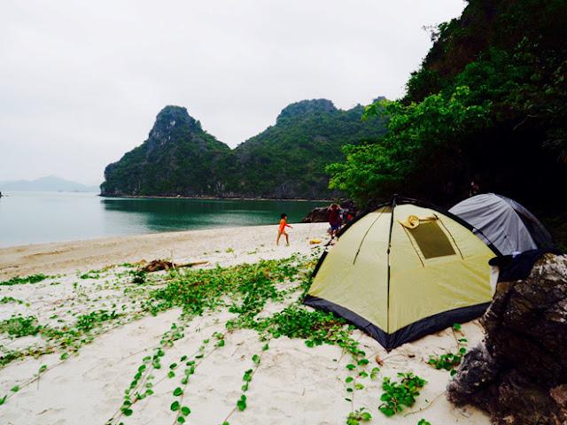 vẻ hoang sơ cảnh thiên nhiên trên hoang đảo Mắt Rồng