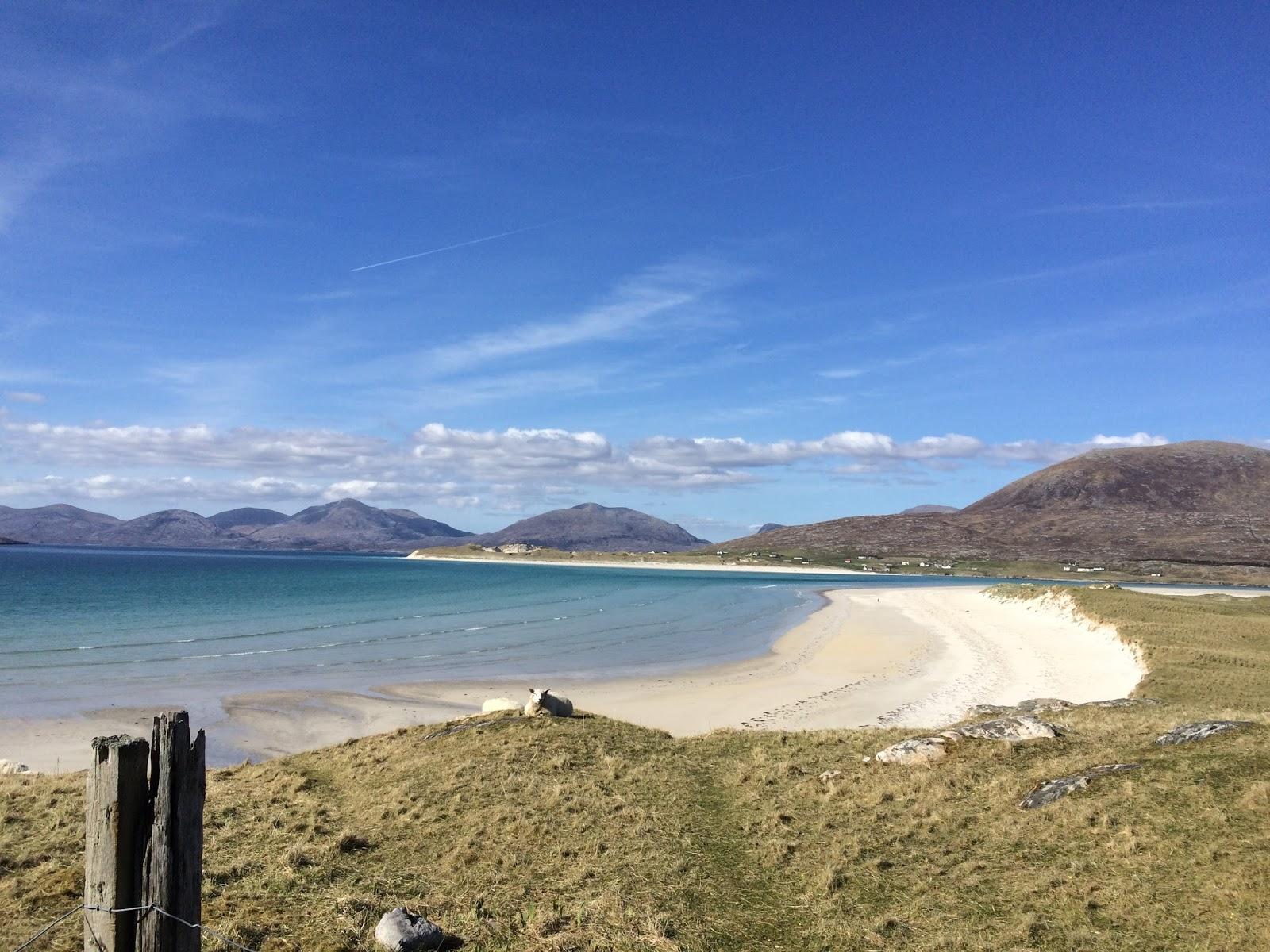 Balm Island Beach The Best Beaches In World