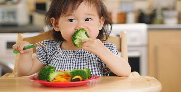 Fungsi Kerbohidrat dan Protein